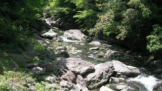 木星会の川
